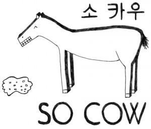 so cow